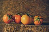 Still Life Art Photography With Tomatoes