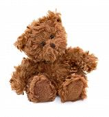 picture of teddy  - Brown sitting teddy bear isolated on white - JPG