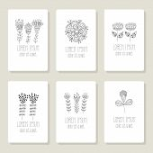 Set of cards, invitation with hand drawn floral elements.