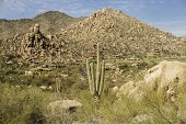 Arizona, desert valley landscape near Phoenix,Scottsdale,USA