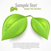 Green Two Leaves & Text