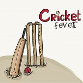 Stylish bat with red ball and wicket stumps for Cricket Fever.