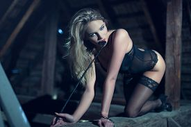 picture of crawl  - Sensual woman in underwear and whip crawling on timber in barn at night bdsm - JPG