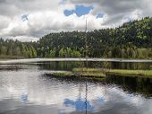 stock photo of symmetry  - Symmetry and reflections is this small lake with a dead tree in the center - JPG
