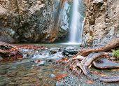 stock photo of waterfalls  - Waterfall splashing on a small lake with beautiful yellow leaves and tree roots - JPG