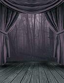 The Dark Forest Stage