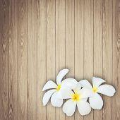 stock photo of frangipani  - Close up white and yellow frangipani flower on wood background - JPG