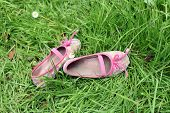 stock photo of pink shoes  - Pair of little girls pink canvas shoes lying on green grass with small white flowers - JPG