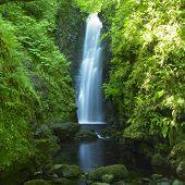 Cranny Falls, County Antrim, Northern Ireland