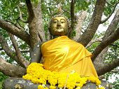 Buddha statue from Thai temple