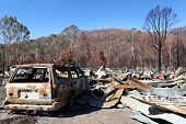 Aftermath of a ferocious bushfire.  Burnt out car and houses, amidst eucalyptus trees.