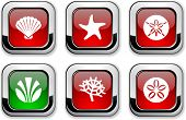 Marine glossy icons. Vector buttons.
