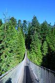 Capilano suspension bridge Vancouver, Canada