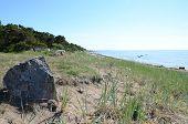 Landscape In Gotland