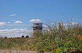 Watchtower Through Grass