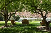 stock photo of tree snake  - Three wooden pieces of outdoor furniture are placed in the shade of fruit trees on the grassy bank of a hill looking down on the swift rapids of the Snake River in Idaho - JPG