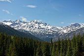 White Pass & Yukon Route View
