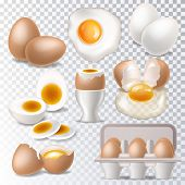 Egg Vector Healthy Food Eggwhite Or Yolk In Egg-cup For Breakfast Illustration Set Of Eggshell Or Eg poster