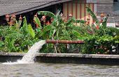 Pumping Of Flood Water In Bangkok, Thailand