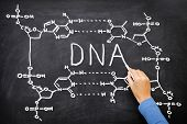 foto of helix  - DNA blackboard drawing - JPG