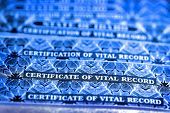 Several Certificate of Vital Records for Birth poster