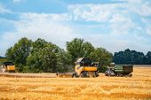 Harvest Gathering Technic Working In Field . Combine Harvester Agriculture Machine Harvesting Golden poster