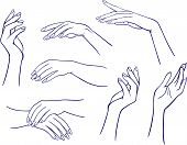 Woman's outlined hands