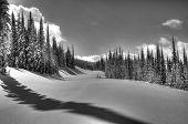 Kootenay Winter