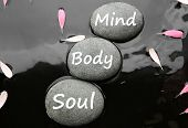 Spa Stones With Words Mind, Body, Soul And Pink Flower Petals In Water, Flat Lay. Zen Lifestyle poster