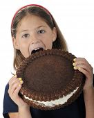 An attractive elementary girl biting into a giant-sized, cream-filled, chocolate cookie.  Space on c