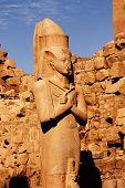picture of ramses  - The statue of Ramses in temple of Karnak Luxor - JPG