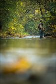 Fly fisherman fly fishing on a splendid mountain river poster