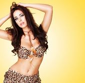 Sexy curvy woman with a bare belly wearing an animal print summer outfit posing against a yellow stu