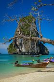 Phra Nang Beach And Island Landscape View With Tree And Boat