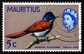 Postage Stamp Mauritius 1965 Mauritius Paradise Flycatcher, Bird