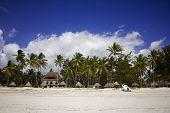 Shore Line Of Paje Village, Zanzibar, Tanzania