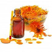 kruiden calendula in de glas- en aromatherapie etherische olie geïsoleerde witte achtergrond