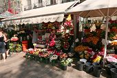 BARCELONA - OCTOBER, 2: Flower stall on Barcelona street on October 2, 2009 in Barcelona, Spain. Rambla boulevard is one of the most recognized streets in the world.
