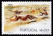 Postage Stamp Portugal 1984 Cheetahs, Lisbon Zoo Centenary
