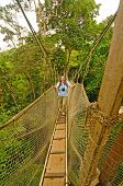 Hiker On Tree Canopy Walkway Above The Rain Forest