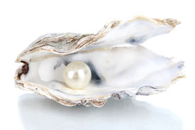 stock photo of pearl-oyster  - Open oyster with pearl isolated on white - JPG