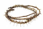 Thorny Branches Woven Into Crown Of Thorns