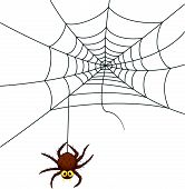 Spider web cartoon
