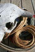 pic of buckaroo  - rope and skull - JPG