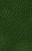 Pattern Of Green Crocodile Skin