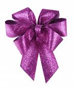 Smart Purple Bow On White