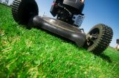 picture of grass-cutter  - Man mowing the lawn - JPG