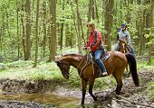 Forest Trail Riders