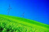 image of wind-farm  - Wind turbines - JPG