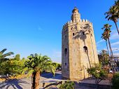Torre Del Oro In Seville, Spain